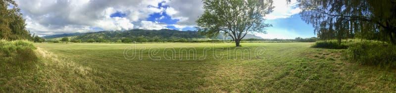 Paisagem panorâmica com árvores e montanhas imagem de stock royalty free