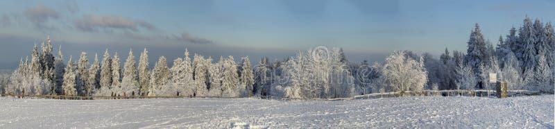Paisagem panorâmico do inverno em Feldberg fotografia de stock