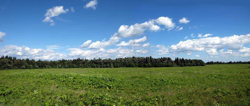 Paisagem panorâmico rural bonita com campo verde, a floresta misturada e as nuvens brancas no céu azul no dia de verão imagem de stock