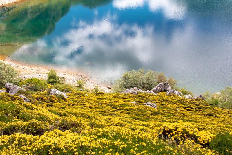Paisagem perto da Espanha dos lagos da montanha de Saliencia, as Astúrias da mola imagens de stock