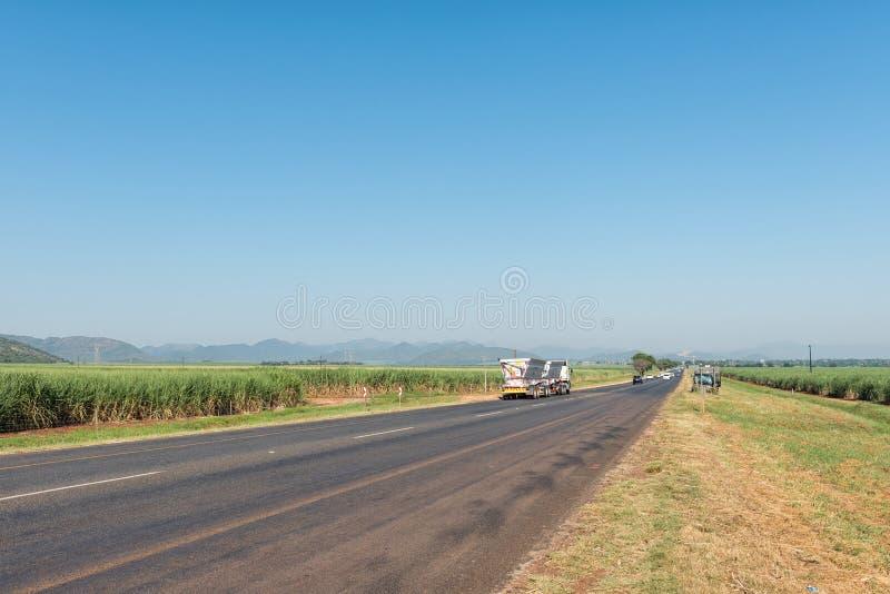 Paisagem perto de Malalane Os campos do cana-de-açúcar são visíveis foto de stock