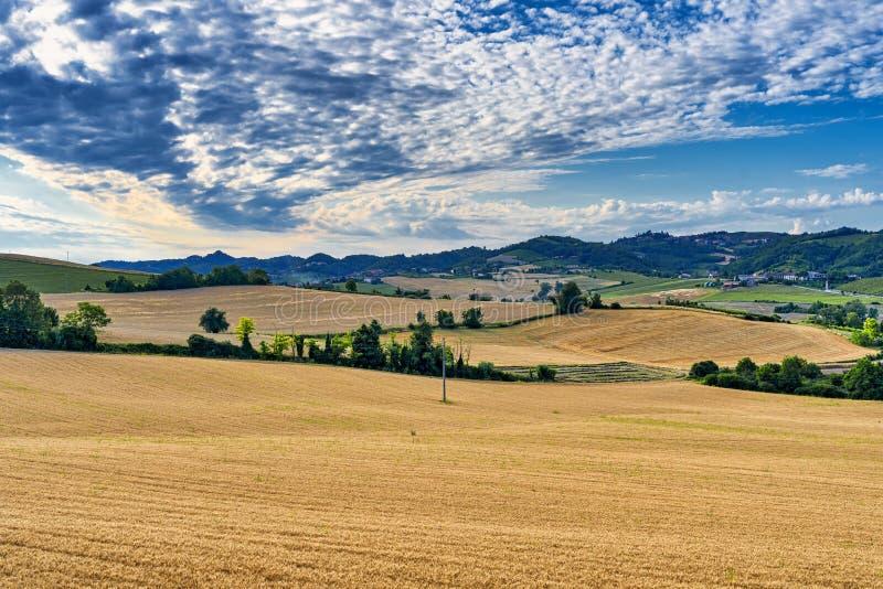 Paisagem perto de Moncalvo, Monferrato, Itália fotos de stock royalty free