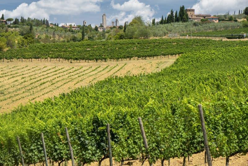 Paisagem perto de San Gimignano Toscânia foto de stock