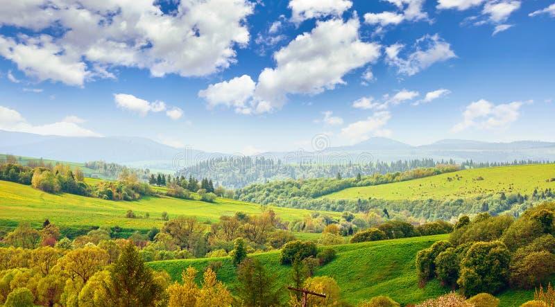 Paisagem pitoresca em montanhas de Carpathians, Ucrânia fotos de stock royalty free