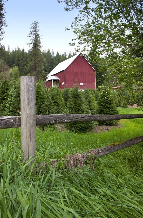 Paisagem rural. foto de stock