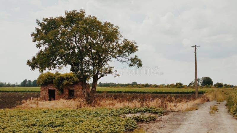 Paisagem rural fotografia de stock royalty free