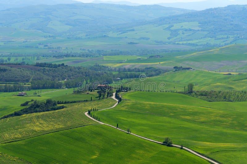 Paisagem rural bonita, árvores de cipreste, campo verde e céu azul em Toscânia perto de Pienza Italy imagem de stock