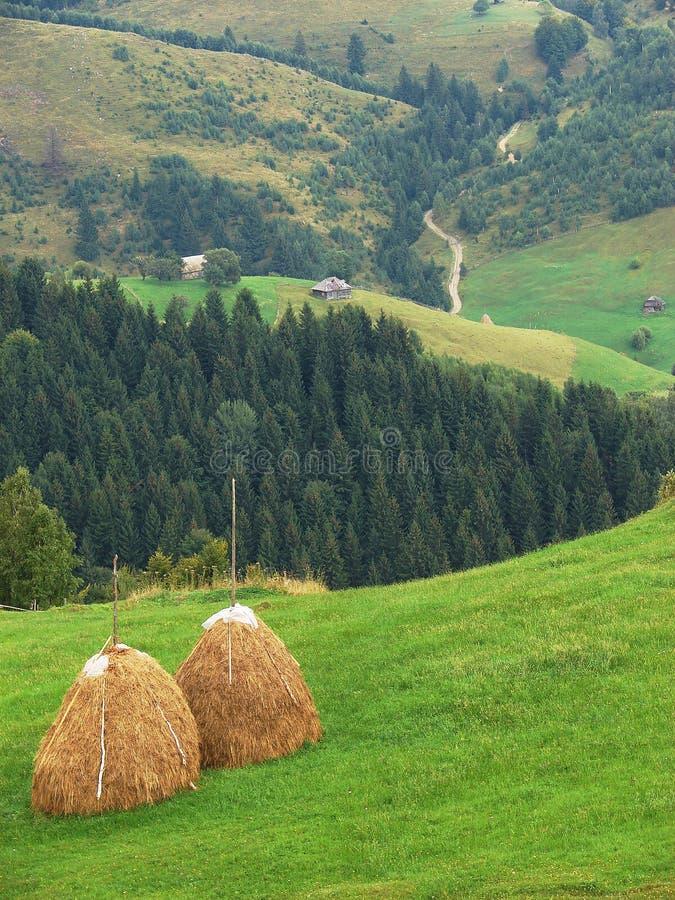 Paisagem rural bonita da Transilvânia, Romênia foto de stock