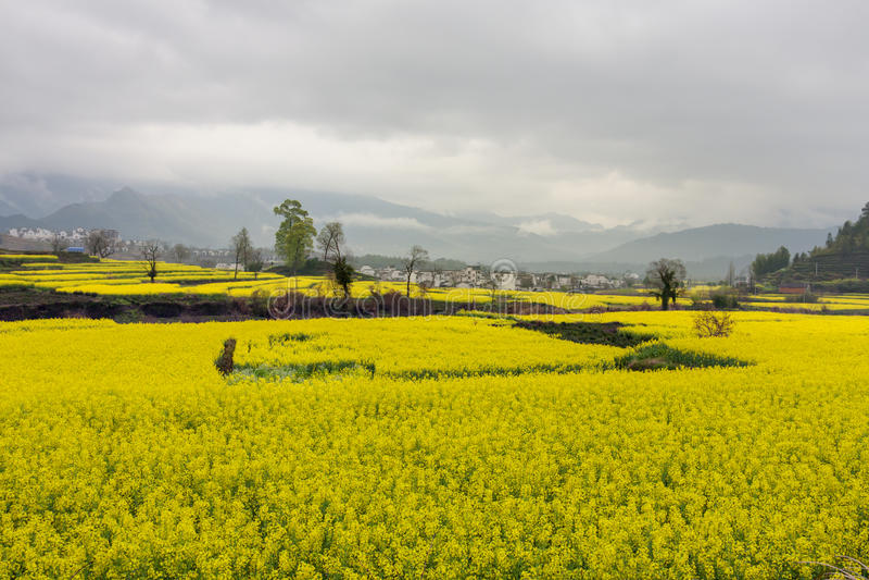Paisagem rural bonita em China imagem de stock