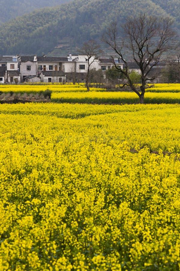 Paisagem rural China fotos de stock