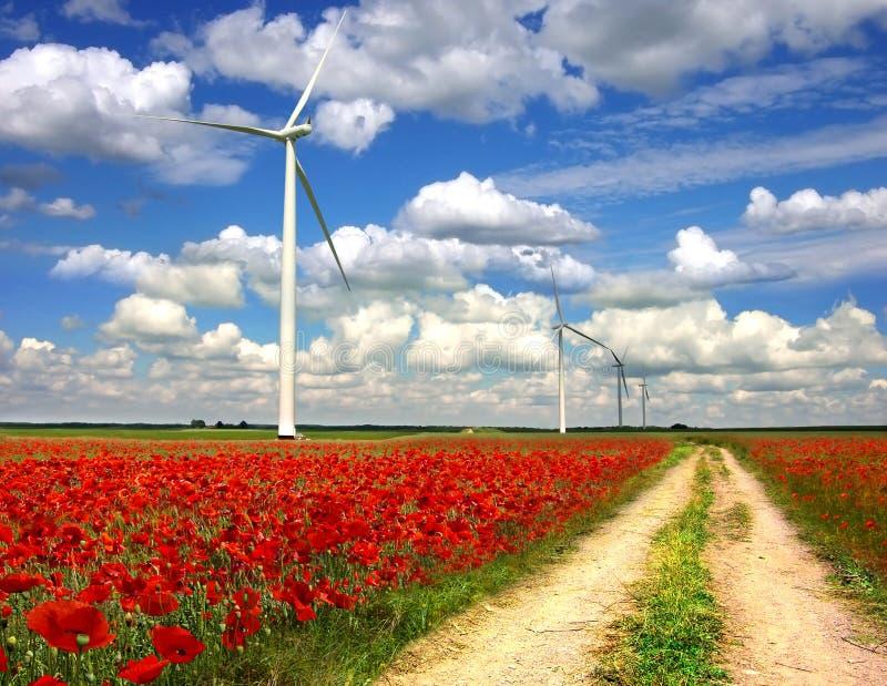 A paisagem rural com as turbinas de vento em papoilas planeia imagens de stock