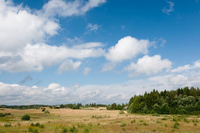 Paisagem rural com céu nebuloso imagem de stock royalty free