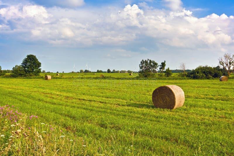 A paisagem rural com monte de feno e os moinhos de vento atrás do verão rural ajardinam Prado pastoral europeu típico, pasto, cam fotografia de stock royalty free
