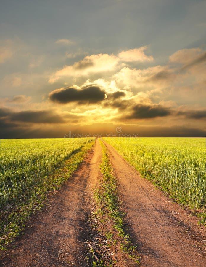 Paisagem rural com uma estrada fotografia de stock