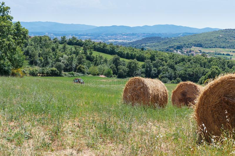 Paisagem rural da exploração agrícola em Toscânia foto de stock
