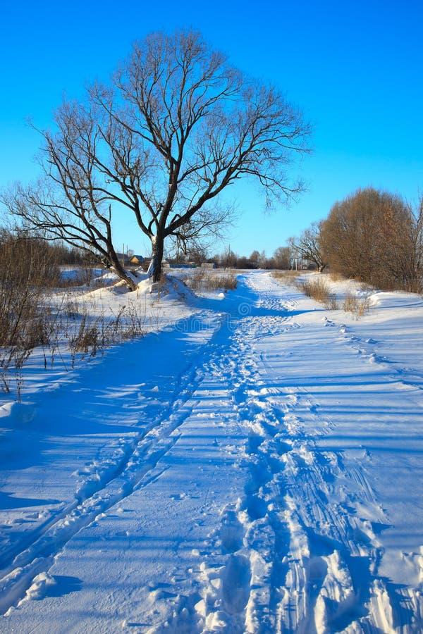 Paisagem rural do inverno. imagem de stock royalty free