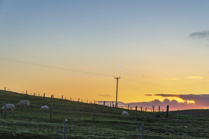 Paisagem rural do por do sol sobre o coutryside do Ness, ilha de lewis, Escócia imagens de stock royalty free