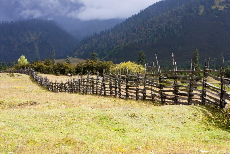 Paisagem rural do prado do outono foto de stock