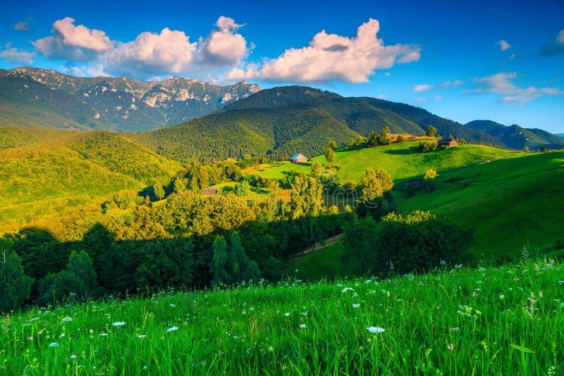 Paisagem rural do verão excitante perto do farelo, a Transilvânia, Romênia, Europa fotos de stock