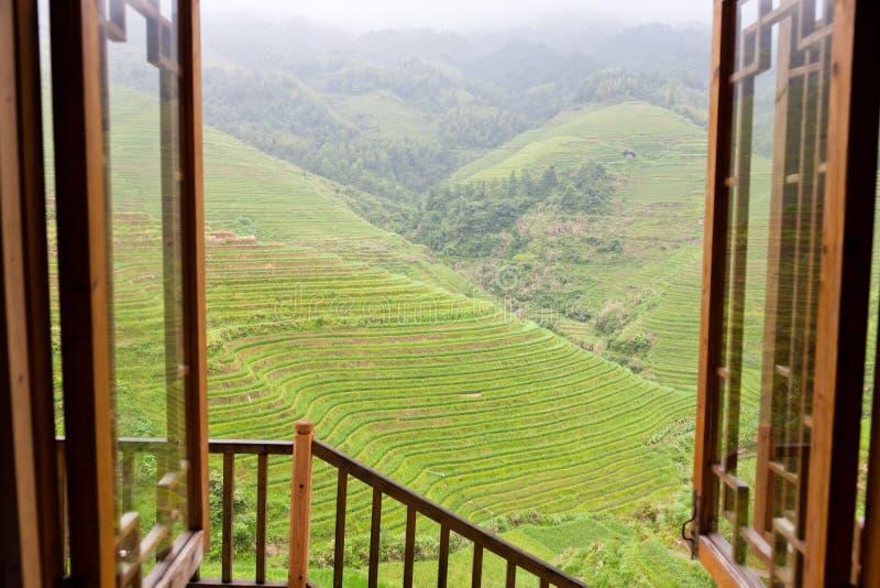 Paisagem rural dos terraços foto de stock royalty free