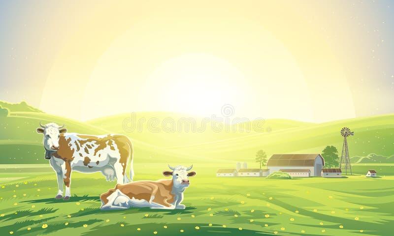 Paisagem rural e duas vacas ilustração do vetor