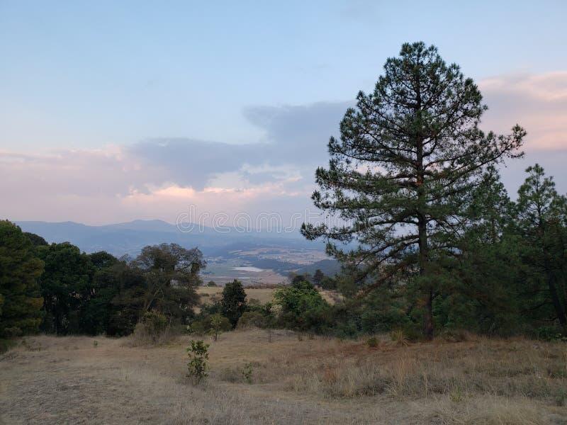 paisagem rural em Ixtlahuaca, México em um dia nebuloso fotografia de stock royalty free