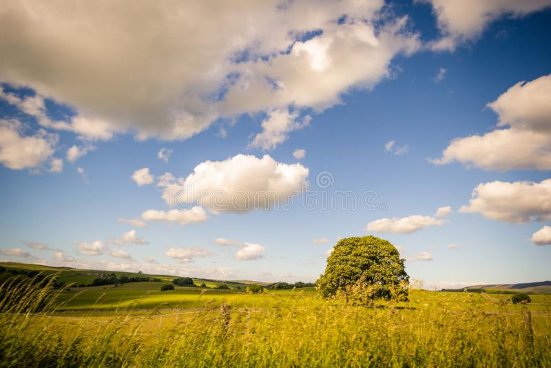 Paisagem rural em vales de Yorkshire, Inglaterra, Reino Unido imagem de stock
