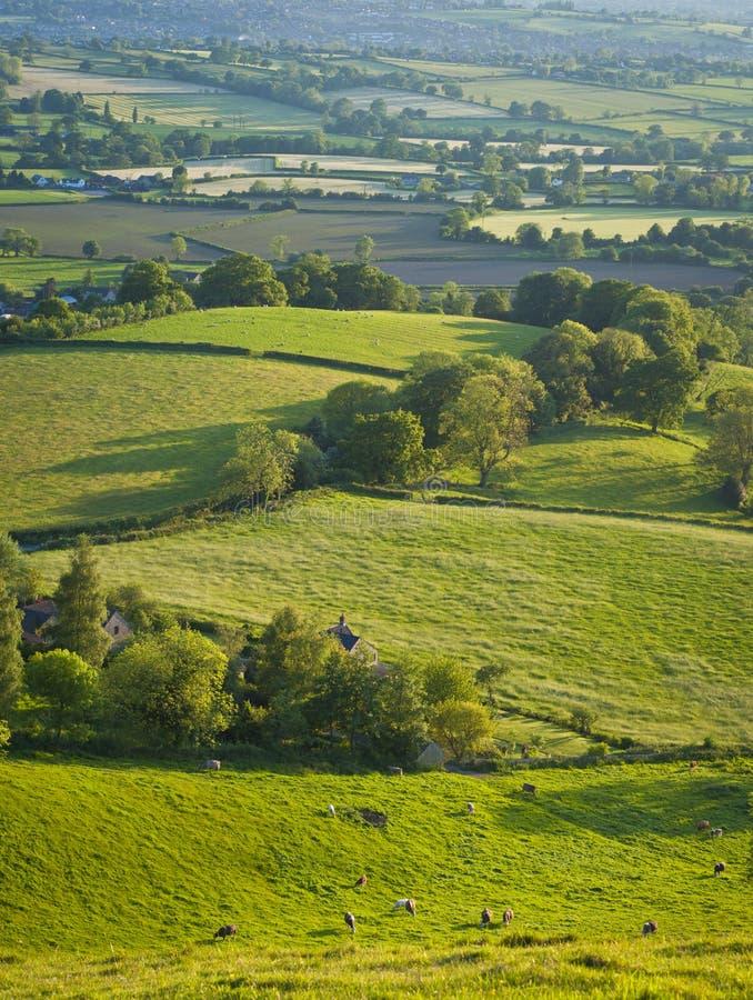 Paisagem rural idílico, Cotswolds Reino Unido imagens de stock