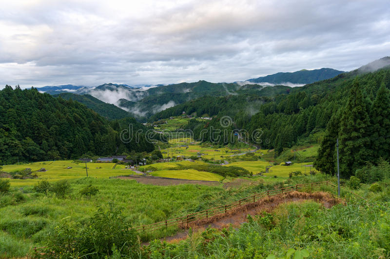 Paisagem rural japonesa com os terraços da almofada de arroz fotografia de stock royalty free