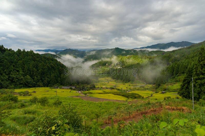 Paisagem rural japonesa com os terraços do arroz na floresta da montanha fotografia de stock royalty free