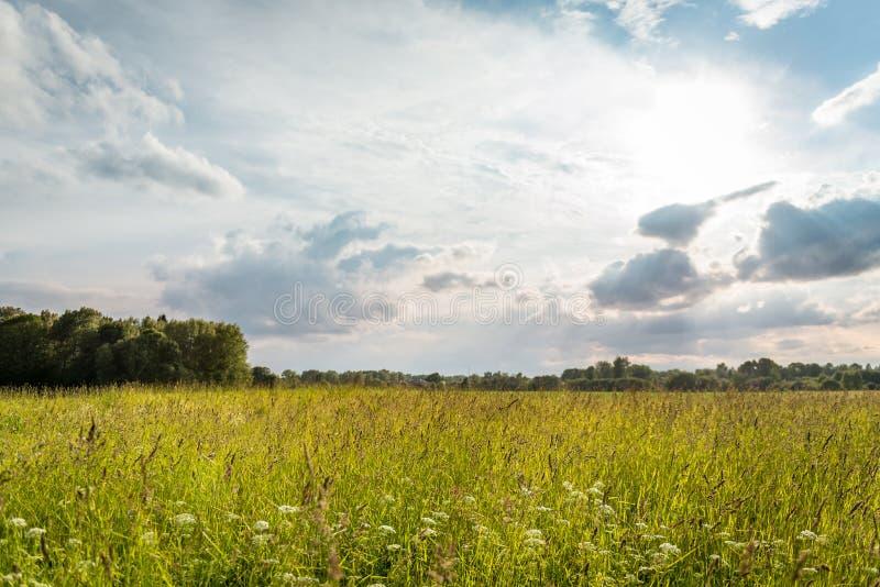 Paisagem rural letão fotos de stock