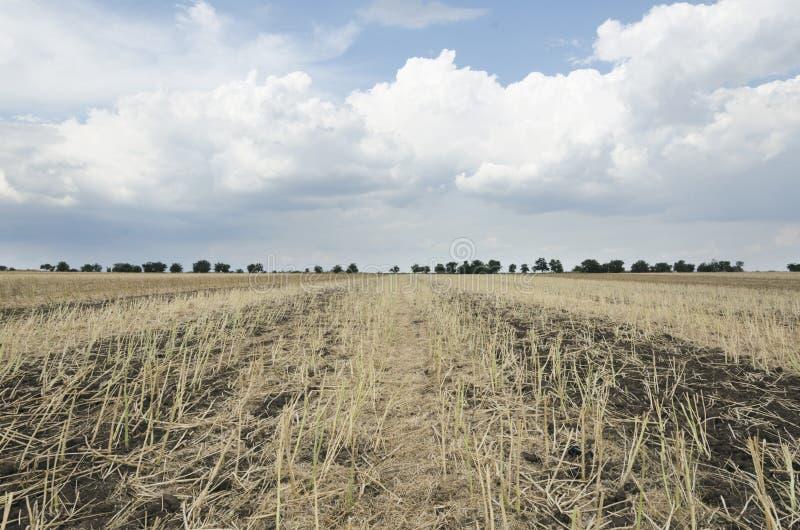 Paisagem rural lindo Dia ensolarado i o campo após a colheita foto de stock