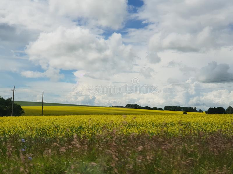 Paisagem rural no campo fotos de stock