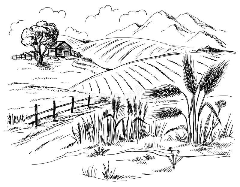 Paisagem rural no estilo gráfico ilustração royalty free