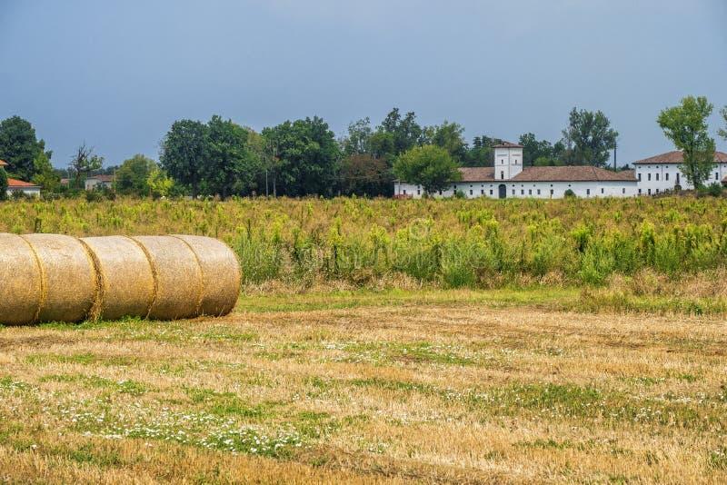 Paisagem rural perto de Busseto, Itália imagem de stock
