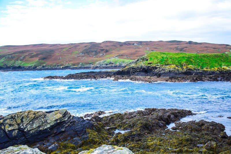 Paisagem sadia da vitela na ilha do homem fotografia de stock royalty free
