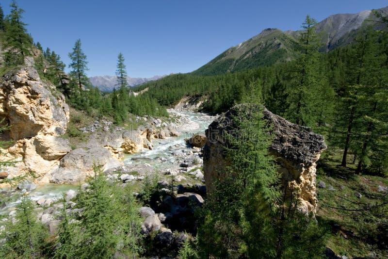 Paisagem selvagem. Córrego do rio da montanha. Sibéria, Ta foto de stock royalty free