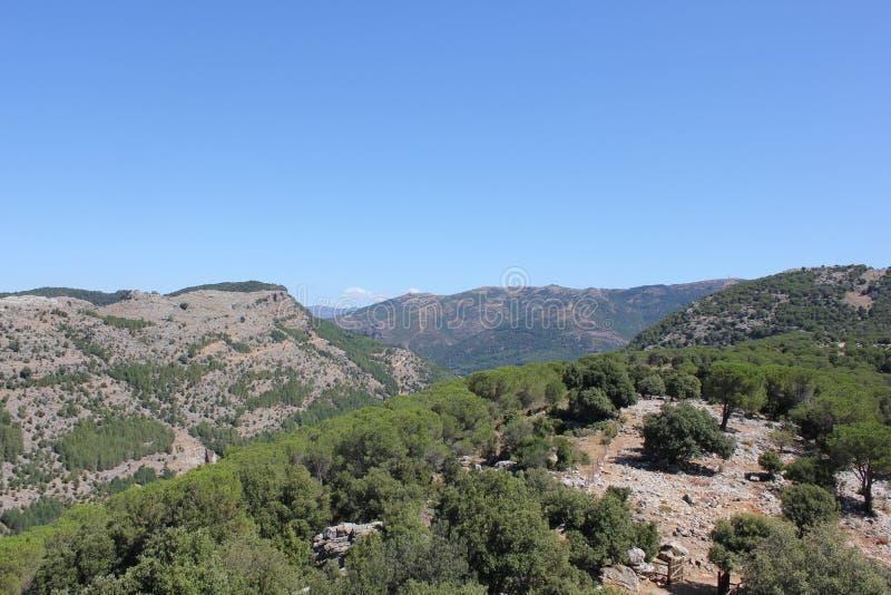 Paisagem selvagem de Sardinia com floresta e montanhas - Italia fotografia de stock
