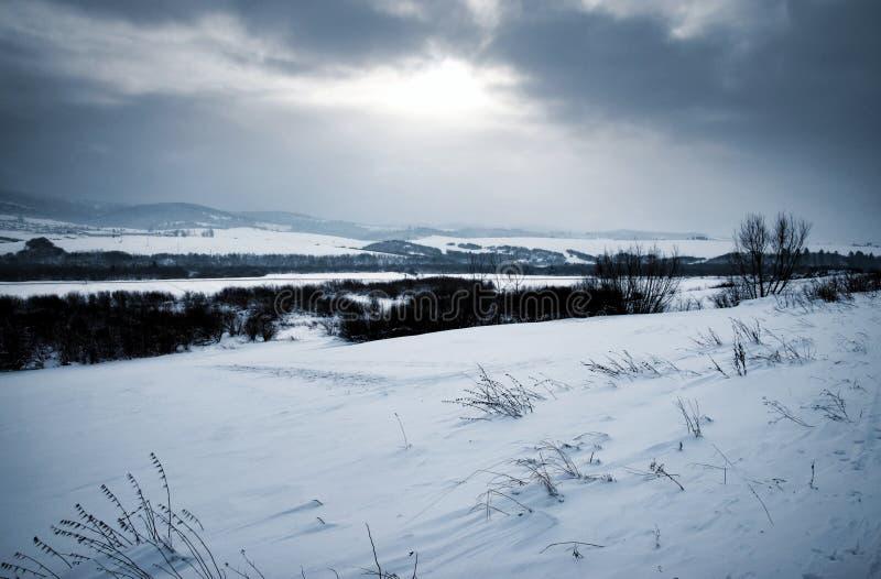 Paisagem sombrio do inverno com neve fotos de stock