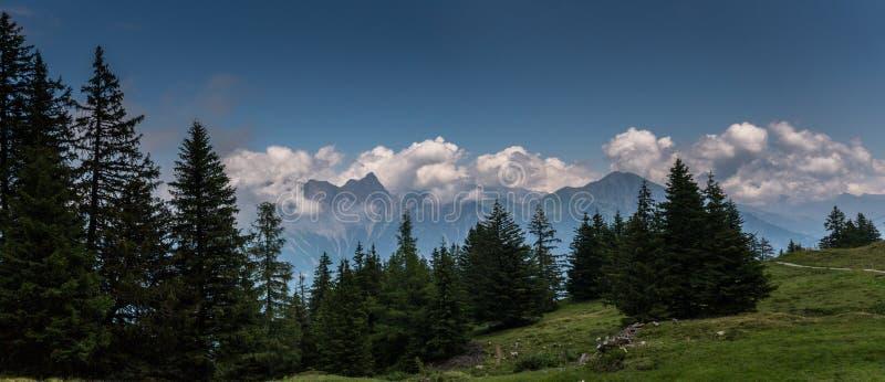 Paisagem suíça lindo da montanha dos cumes no verão com a floresta no primeiro plano imagens de stock
