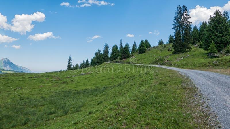 Paisagem suíça - montanhas e floresta em Suíça foto de stock royalty free