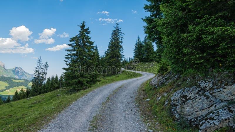 Paisagem suíça - montanhas e floresta em Suíça foto de stock