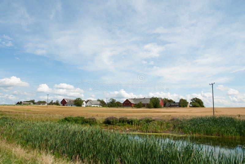 Paisagem sueco na costa oeste imagens de stock