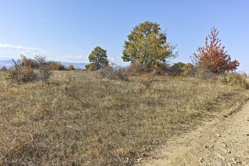 Paisagem surpreendente do outono da montanha de Cherna Gora Monte Negro, Bulg?ria fotos de stock
