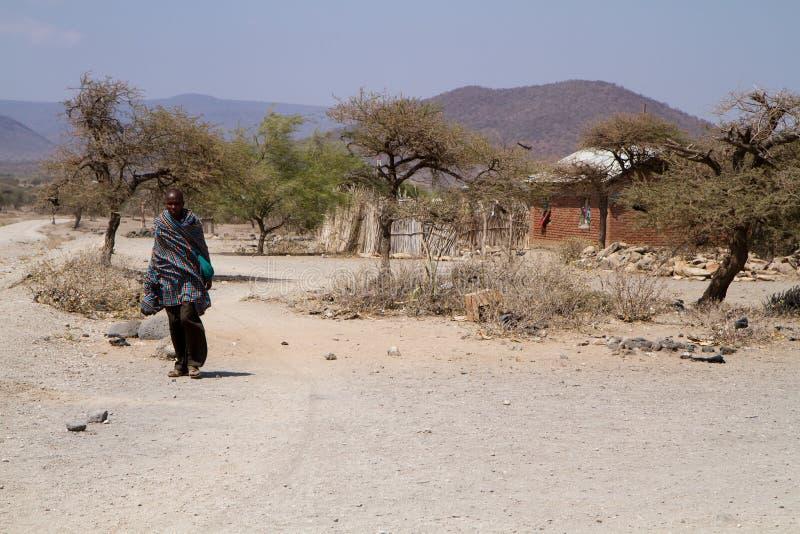 Paisagem tanzaniana imagem de stock