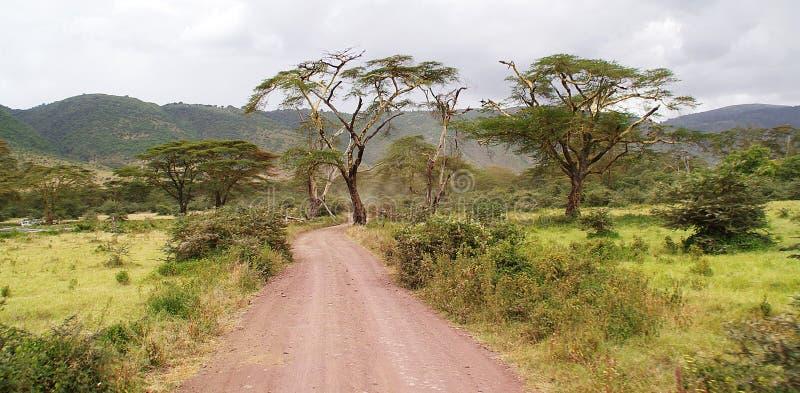 Paisagem tanzaniana imagens de stock