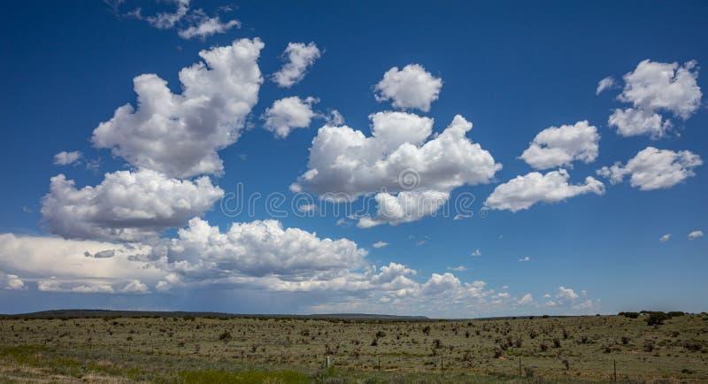 Paisagem, terra do deserto e céu azul em um dia de mola ensolarado imagens de stock