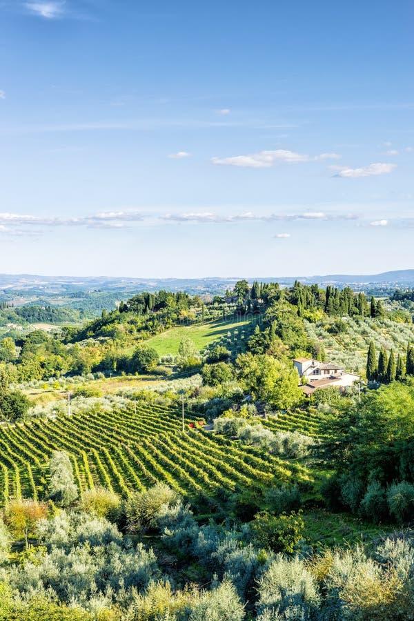 Paisagem Toscânia perto de San Gimignano imagem de stock royalty free