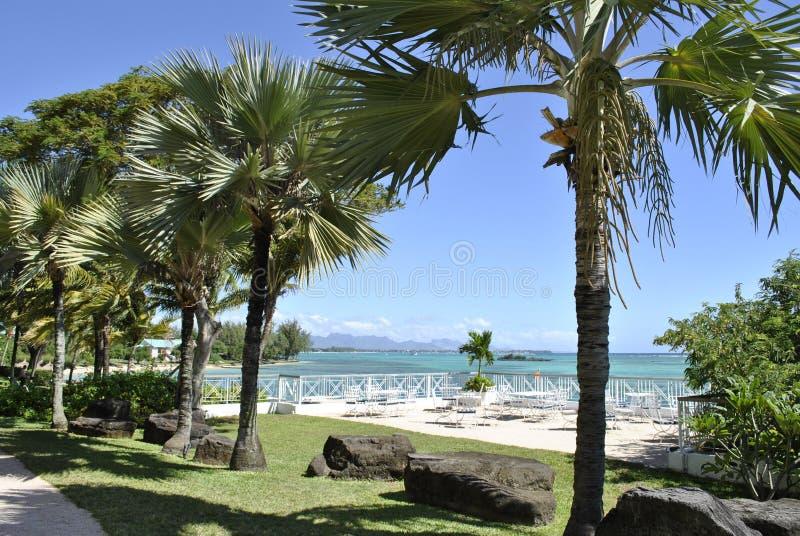 Paisagem tropical fotografia de stock royalty free