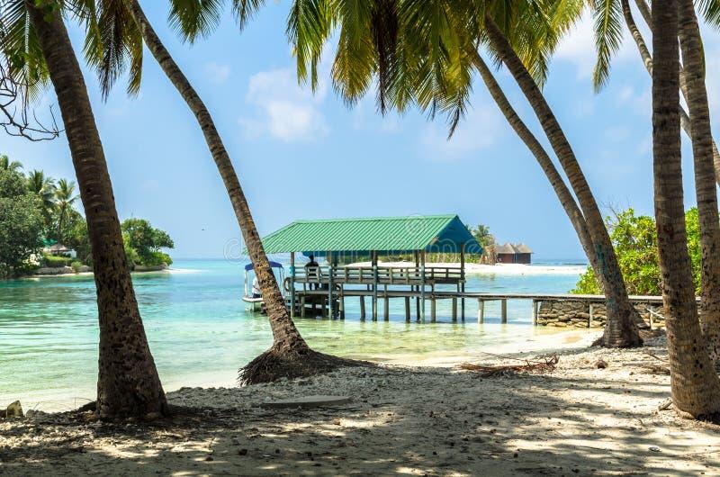 Paisagem tropical da natureza da praia, atol de Kaafu, ilha de Kuda Huraa fotos de stock